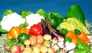 夏天减肥最合适的六种食物