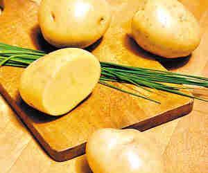 多吃马铃薯营养低脂