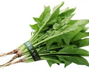 10种最有营养的蔬菜