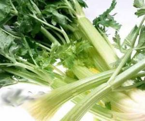 多吃蔬菜根祛病抗寒增强抵抗力