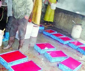 南京查处制售鸭血黑作坊 4斤鸭血加药物变20斤