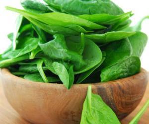 小心!七类蔬菜含天然毒素