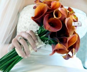 25~30岁女人最想结婚