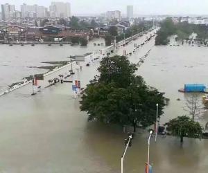 好医生集团援助洪水受灾